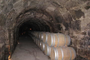Guided Wine Day Tour to Ribera del...