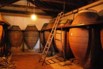 Tagesausflug in kleiner Gruppe zur Weinverkostung ab Madrid