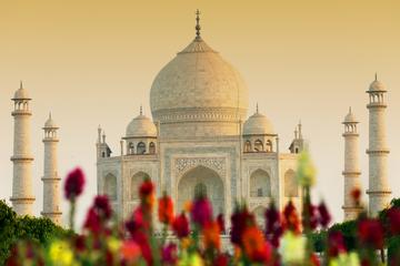 Exclusivo da Viator: excursão particular ao Taj Mahal e ao Forte de...