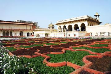 Excursión privada de un día a Agra con paseo cultural
