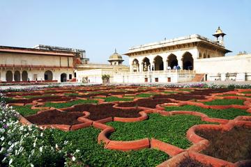 Excursion privée d'une journée à Agra : Taj Mahal, Fort d'Agra et le...