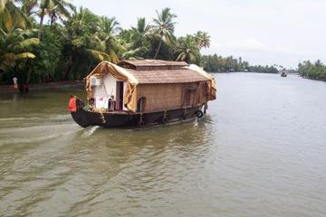 Private Backwater Cruise on a Houseboat and Shikara including Lunch
