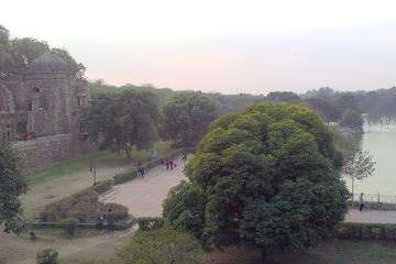 Private Delhi Heritage and Urban Village Walk at Hauz Khas Village