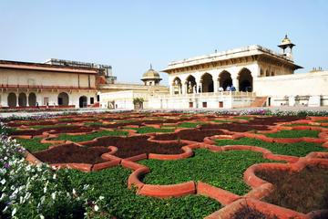 Tour privato giornaliero ad Agra: Taj Mahal, Forte di Agra e