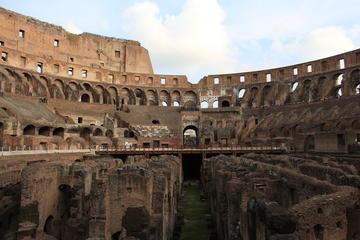 Billet coupe-file: Visite élite Colisée, Forum romain et Mont Palatin