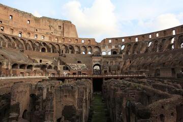 Evite las colas: recorrido de élite al Coliseo, el Foro Romano y la...