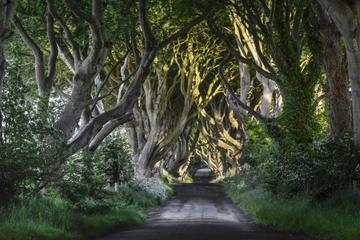 Excursion «Game of Thrones» et la Chaussée des Géants au départ de...