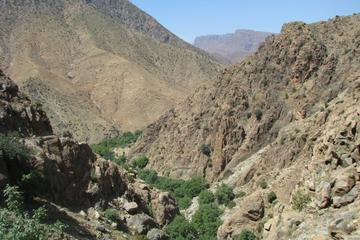 Day trip to Atlas mountains & berber...