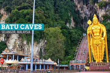 City Tour with Batu Cave and Fireflies Private Tour