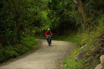 Bogotá Mountain Bike and Coffee Tour
