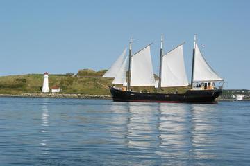 Book Tall Ship Silva Sailing Cruise on Viator