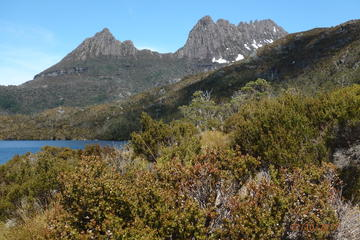 Cradle Mountain Sunrise Park Explorer