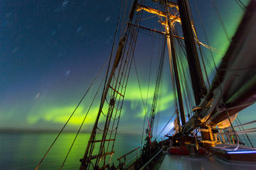 Silent Whale Exploring and Northern Lights