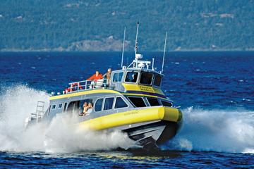 Crucero de avistamiento de ballenas desde Vancouver a Victoria