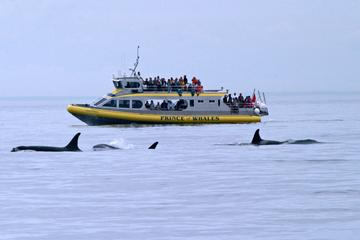 Day Trip Victoria Shore Excursion: Whale-Watching Cruise and Butchart Gardens Admission near Victoria, Canada