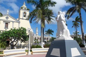 Escapada de un día a Alvarado y Tlacotalpan desde Veracruz