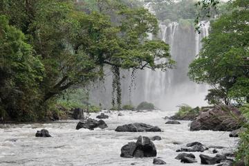 Escapada de un día al lago Catemaco y Los Tuxtlas desde Veracruz