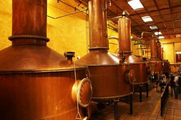 Excursão de um dia para Tequila e destilaria saindo de Guadalajara