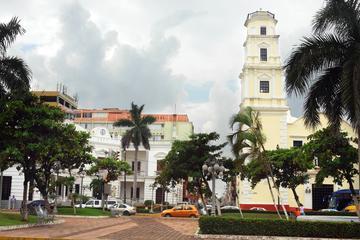 Excursión combinada en Veracruz: Visita turística a La Antigua, San...