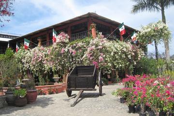 Jardins Botânicos de Puerto Vallarta e almoço em Playa Las Gemelas