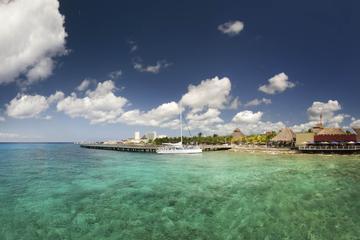 Tagesausflug nach Cozumel von Cancún