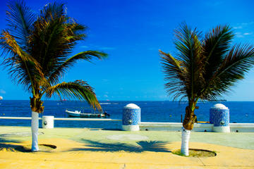 Veracruz City Sightseeing Tour...