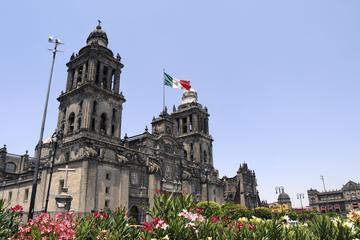Visita turística por la ciudad de México con museo antropológico y...