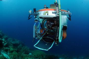 Explorers Dive