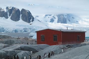 Crociera di 11 giorni in Antartide da Ushuaia: passaggio di Drake