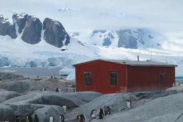Cruzeiro de 11 dias na Antártica partindo de Ushuaia: Passagem de...