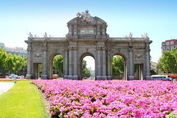 Tour privato: tour della città di Madrid