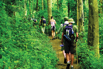 4-tägige Tour zum Dorf eines Bergstamms inklusive Wanderung durch den...