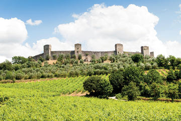Chianti and Siena Half Day Tour with Dinner from Florence
