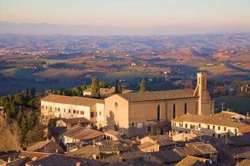 Chianti Wine Tasting and San Gimignano Day Trip