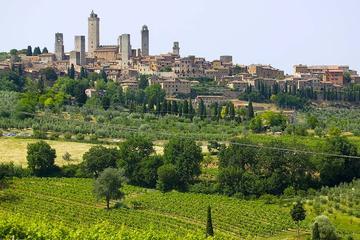 Excursión en Volterra y San Gimignano con cata de quesos y Vernaccia...