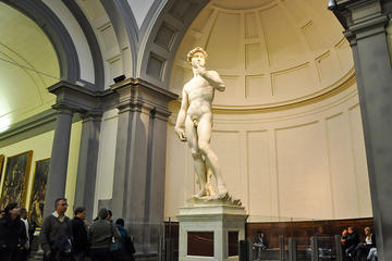 Florence Accademia Gallery Tour from Pisa