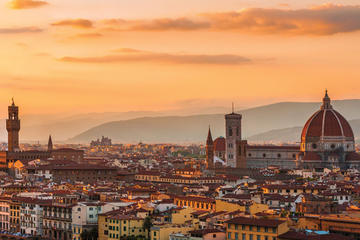 Florence Grand Panoramic Tour with Accademia Gallery from Florence