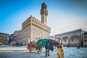 Florence in a day: Uffizi, Accademia, Florence center and Hills
