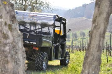 Full- Day Chianti Experience on a Quad with Picnic from Siena