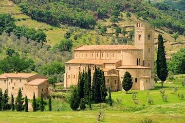 Gita di una giornata da Siena a Montalcino e all'abbazia di