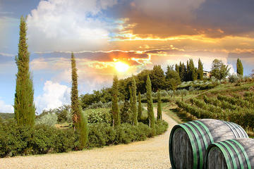 Half-Day Afternoon Chianti Tour from ...