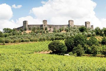 Tour del Chianti e dei castelli da Siena