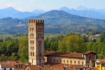 Tour giornaliero di Lucca e Pisa da Firenze