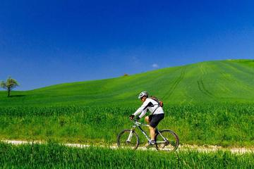Tuscany by Electric Bike