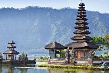 Travel Bali Villas-Bedugul Nature Tour