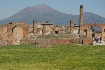 Excursion d'une journée à Pompéi et au Vésuve au départ de Naples