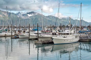 Excursion en bord de mer à Anchorage : transfert pré-croisière et...