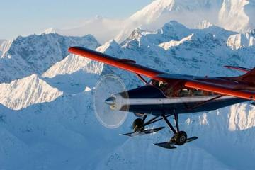 Mt Denali Flightseeing Tour from...
