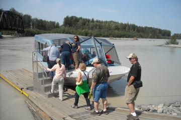 Talkeetna Wilderness Jet Boat Tour