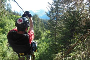 Talkeetna Zipline Adventure from Anchorage